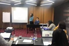 PeerCare-Meeting-Porto-2